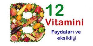 B12 Vitamini Hangi Besinlerde Bulunur? B12 Vitamini2