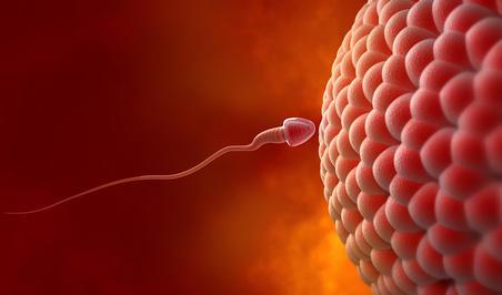 Hamilelik Emareleri Nedir ? Yumurtlama Belirtileri Yumurtladigimi Nasil Anlarim Yumurtlamanin Belirtileri Nelerdir Hamilemiyim Kadinlar Kulubunde Sizlerle 5F9D8Cfde7105
